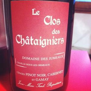 Fiefs_vendeens-Domaine_des_jumeaux-Le_Clos_des_Châtaigniers-2011-Insta