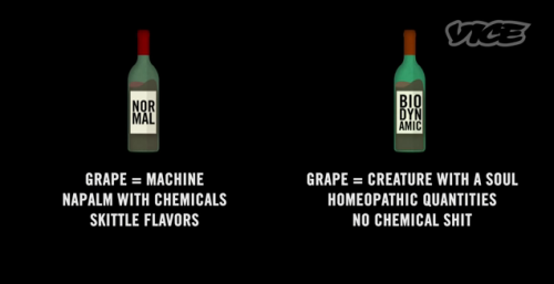 vice-wine_magician