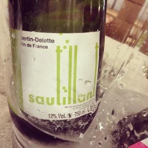 Vallée de la Loire - Vin de France - Domaine Bertin-Delatte - Sautillant - Insta