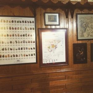 casa de Vinos La Brujidera - deco