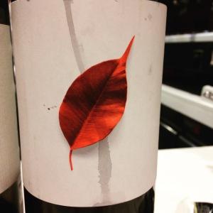 Espagne - Galice - Rias Baixas - Adega Pedralonga - DoUmia - 2012 (rouge)