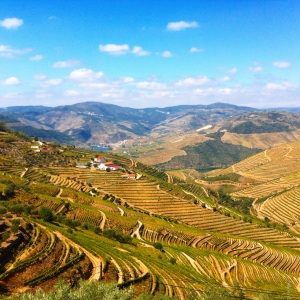 Portugal-vallee-douro-paysage-002