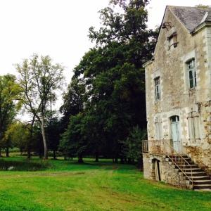 Domaine-Château du Coing Saint Fiacre - Muscadet