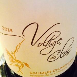 Vallée de la Loire - Saumur-Champigny – Les Clos Maurice - Voltige des Clos - 2014