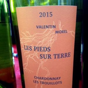 Jura - Les pieds sur Terre - Valentin Morel - Chardonnay - Les Trouillots - 2015