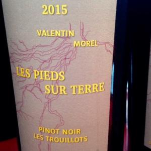 Jura - Les pieds sur Terre - Valentin Morel - Pinot noir - 2014