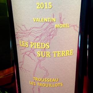 Jura - Les pieds sur Terre - Valentin Morel - Trousseau - 2014