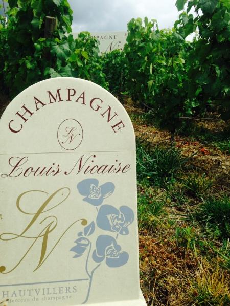 Vignes Louis Nicaise