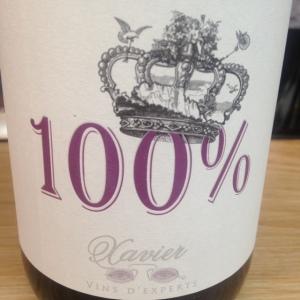 Vallée du Rhône - Côtes du Rhône - Xavier Vins - 100%