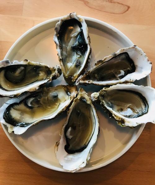 Honfleur - Restaurant - Le Fleuron - Huîtres